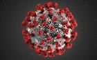Votre bibliothèque en ligne !